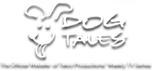 Dog Tales TV